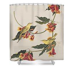 Rathbone Warbler Shower Curtain by John James Audubon