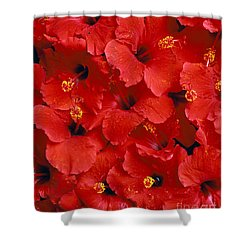 Red Hibiscus Shower Curtain by Tomas del Amo - Printscapes