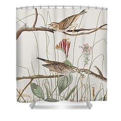 Savannah Finch Shower Curtain by John James Audubon