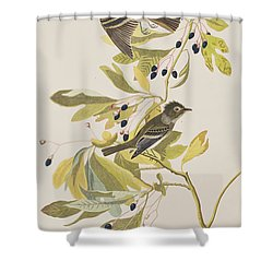 Small Green Crested Flycatcher Shower Curtain by John James Audubon