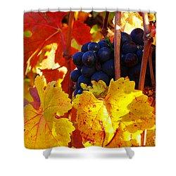 Vineyard 16 Shower Curtain by Xueling Zou