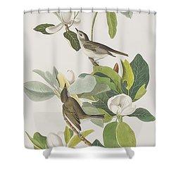 Warbling Flycatcher Shower Curtain by John James Audubon
