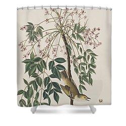 White-eyed Flycatcher Shower Curtain by John James Audubon