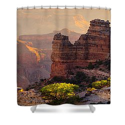 A Grand View Shower Curtain by Mikes Nature