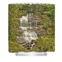 Alger Falls Shower Curtain by Michael Peychich
