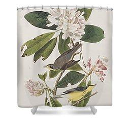 Canada Warbler Shower Curtain by John James Audubon