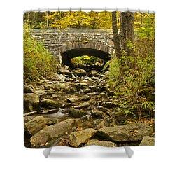 Stone Bridge 6063 Shower Curtain by Michael Peychich