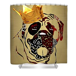 Top Dog Collection Shower Curtain by Marvin Blaine