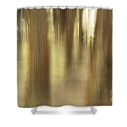 Nature Abstract Shower Curtain by Gaspar Avila