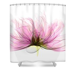 X-ray Of Peony Flower Shower Curtain by Ted Kinsman
