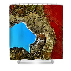 377 At 41 Series 4 Shower Curtain by Skip Hunt