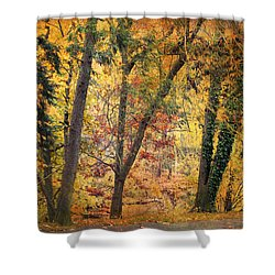 Autumn Canvas Shower Curtain by Jessica Jenney