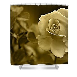 Floral Gold Collection Shower Curtain by Marvin Blaine
