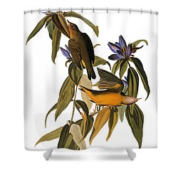Audubon: Warbler, (1827-38) Shower Curtain by Granger