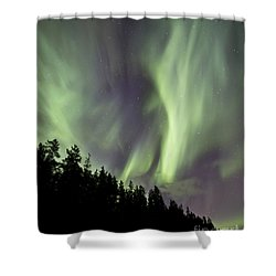 Aurora Borealis Over Trees, Yukon Shower Curtain by Jonathan Tucker