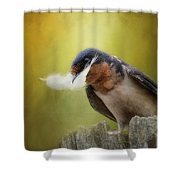 A Feather For Her Nest Shower Curtain by Jai Johnson