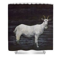 A Feral Goat On The Burren Shower Curtain by Sean Conlon