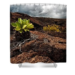 A Hard Existence Shower Curtain by Christopher Holmes