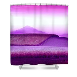 A Sweet Harvest Shower Curtain by Holly Kempe