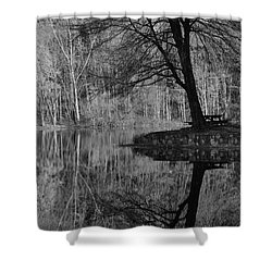 A Tree Of A Different Color Shower Curtain by Karol Livote