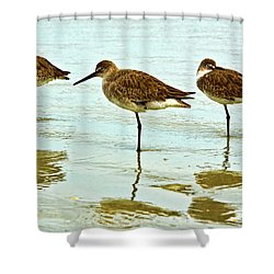 A Trio Shower Curtain by Christopher Holmes