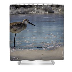 A Walk On The Beach Shower Curtain by Marvin Spates