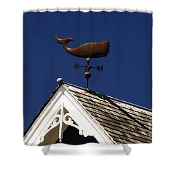 A Whale Of A House Shower Curtain by David Lee Thompson