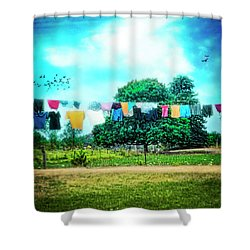 A Woman's Work Is Never Done Shower Curtain by Tammy Wetzel