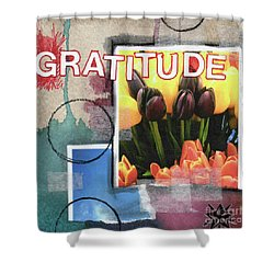 Abstract Gratitude Shower Curtain by Linda Woods