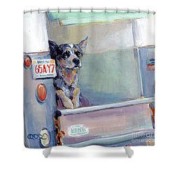 Acd Delivery Boy Shower Curtain by Kimberly Santini