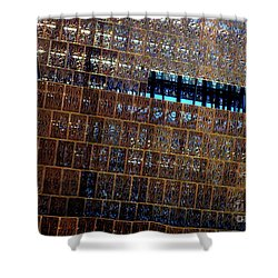 African American History And Culture 3 Shower Curtain by Randall Weidner