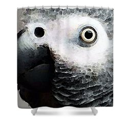 African Gray Parrot Art - Softy Shower Curtain by Sharon Cummings