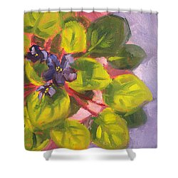 African Violet Still Life Oil Painting Shower Curtain by Nancy Merkle