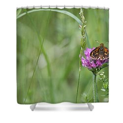 All By Myself Shower Curtain by Karol Livote