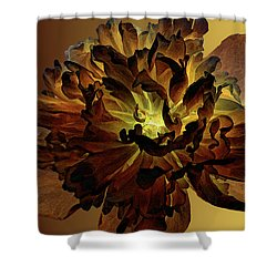 All For You 1 Shower Curtain by Angelina Vick