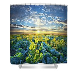 All Joined As One Shower Curtain by Phil Koch