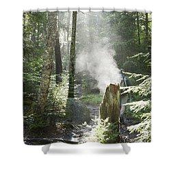 Ammonoosuc Ravine Trail - White Mountains New Hampshire Usa Shower Curtain by Erin Paul Donovan