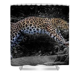 Amur Leopard On The Hunt Shower Curtain by Martin Newman
