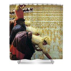 An Italian Rice Field Shower Curtain by Angelo Morbelli