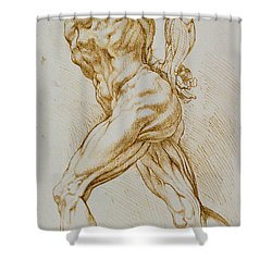 Anatomical Study Shower Curtain by Rubens