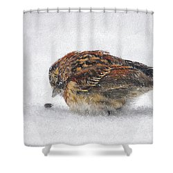 And These Thy Gifts  Shower Curtain by Lois Bryan