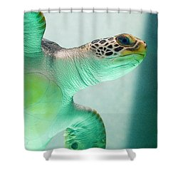 Angel 2 Shower Curtain by Skip Hunt