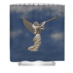 Angels Trumpet Shower Curtain by David Lee Thompson