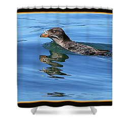 Angry Bird Shower Curtain by BYETPhotography