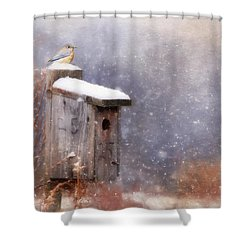 Apartment 25 Shower Curtain by Lori Deiter