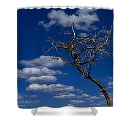 Apparition Shower Curtain by Skip Hunt