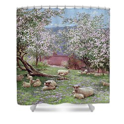 Appleblossom Shower Curtain by William Biscombe Gardner