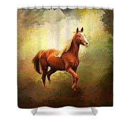 Arabian Horse Shower Curtain by Jai Johnson