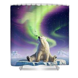 Arctic Kiss Shower Curtain by Jerry LoFaro