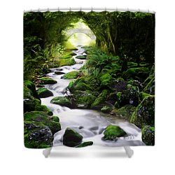 Arden Bridge Shower Curtain by John Edwards